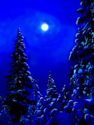 Fallen Snow Digital Art Posters - Moonshine On Snowy Pine Poster by Greg Hammond