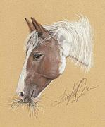 Equine Pastels - Moonshine by Terry Kirkland Cook
