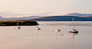 Argyll And Bute Prints - Moored in a row Print by Chris Thaxter