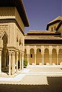 Leones Framed Prints - Moorish architecture in the Nasrid Palaces at the Alhambra Granada Framed Print by Mal Bray