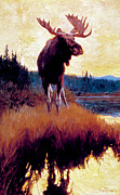 Moose Paintings - Moose Against Skyline by Phillip R Goodwin