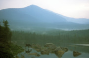 Mount Katahdin Prints - Moose and Mount Katahdin Pamola Print by John Burk