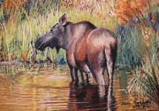 Game Pastels Prints - Moose in Alaska Print by Terri Thompson