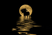 Reflecting Water Mixed Media Prints - Moose in the Moonlight Print by Shane Bechler