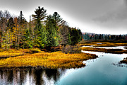 River Prints - Moose River in Old Forge Print by David Patterson