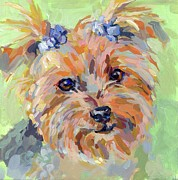 Yorkshire Terrier Art Framed Prints - Moppet Framed Print by Kimberly Santini