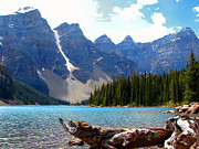 Park Landscape Mixed Media Originals - Moraine Lake Banff National Park Alberta by Bruce Ritchie