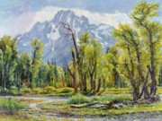 Wyoming Paintings - Moran from Pilgrim Creek by Steve Spencer