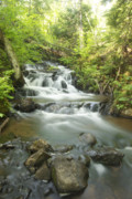 Michigan Waterfalls Prints - Morgan Falls 4579 Print by Michael Peychich