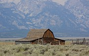 Veronica Batterson - Mormon Row - Grand Teton...