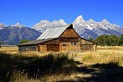 Marty Koch Prints - Mormon Row Barn 2 Print by Marty Koch