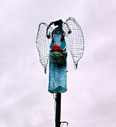Cindy Nunn - Morning Angel