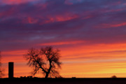 Sunset Greeting Cards Posters - Morning Country Sky Poster by James Bo Insogna