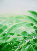 Green Leafs Posters - Morning Dew Drops Poster by Irina Sztukowski