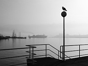 Railing Prints - Morning Fog In Kiel Harbour Print by Copyright by Georg Hörmann