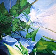 Karen Hurst - Morning Glory