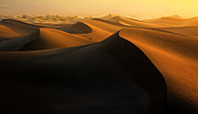 Mesquite Flat Dunes Posters - Morning Glow On Dunes Poster by David Toussaint