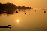 Martina Fagan - Morning Glow on the Estuary