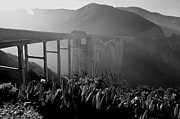 Big Sur Metal Prints - Morning Haze Metal Print by Lucas Keene