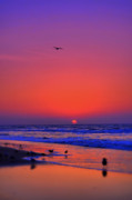 Atlantic Beaches Photo Posters - Morning Hope Poster by Emily Stauring