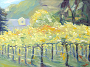 Vineyard In Napa Painting Posters - Morning in Napa Valley Poster by Barbara Anna Knauf