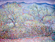 Impressionistic Landscape Drawings - Morning in Tucson Arizona by Elizabeth Carrozza