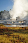 Upper Geyser Basin Acrylic Prints - Morning in Yellowstones Upper Geyser Basin by Bruce Gourley