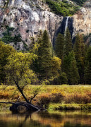 Bridalveil Falls Prints - Morning in Yosemite Valley Print by Jeffrey Campbell