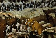 Qin Photos - Morning Light Falls On Soldiers by O. Louis Mazzatenta
