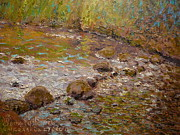 Terry Perham Art - Morning Light Kaikorai Stream by Terry Perham