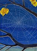 Spider Web Posters - Morning Magic Poster by Catherine G McElroy