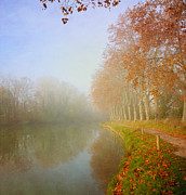 Languedoc-rousillon Posters - Morning Mist Poster by Paul Grand Image
