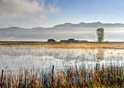 Cache Prints - Morning Mists of Cutler Marsh - Utah Print by Gary Whitton