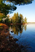 Lhr Images Art - Morning on Chad Lake 4 by Larry Ricker
