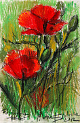 Red Poppies Pastels - Morning Poppies by EMONA Art