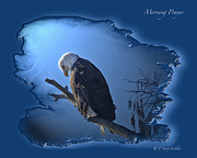 Wildlife Digital Art Posters - Morning Prayer Poster by J Larry Walker