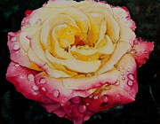Kathy Michels - Morning Rose