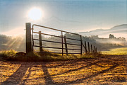 Antique Gate Posters - Morning Shadows Poster by Debra and Dave Vanderlaan