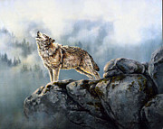 Wolf Howling Paintings - Morning Song by Kathleen  V  Butts