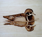 Wildlife Pyrography - Morning Swim by Jo Schwartz