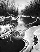 Deer Drawings Posters - Morning Thaw Poster by Peter Piatt