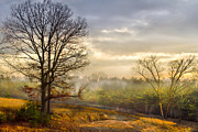 Tennessee Farm Posters - Morning Trees Poster by Debra and Dave Vanderlaan