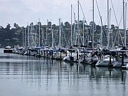 Sausalito Prints - Morning Water Reflections Print by Sarah Kathleen Peck