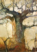 Baobab Paintings - Morninglight by Wendy Rosselli