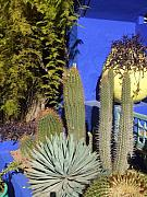 Majorelle Garden Prints - Morocco Marrakesh Majorelle Garden 02 Print by Yvonne Ayoub