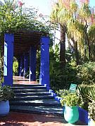 Majorelle Garden Prints - Morocco Marrakesh Majorelle Garden 03 Print by Yvonne Ayoub