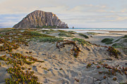 Office Space Prints - Morro Rock Print by Heidi Smith