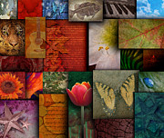 Angela Waye Art - Mosaic Earth Tone Nature Rough Patterns by Angela Waye