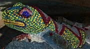 Mosaic Digital Art Prints - Mosaic Lizard Print by Randall Weidner