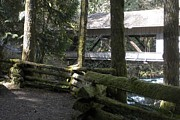 Covered Bridge Pyrography Metal Prints - Moss and Bridge Metal Print by Garry Kaylor